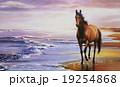 19254868