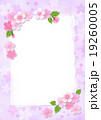 桜 カード ポストカードのイラスト 19260005