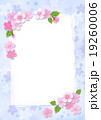 桜 カード ポストカードのイラスト 19260006