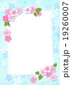桜 カード ポストカードのイラスト 19260007
