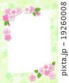 桜 カード ポストカードのイラスト 19260008