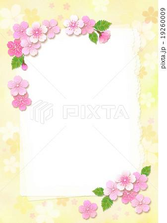 桜のカード_白便箋_他カラーあり 19260009