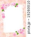 桜 カード ポストカードのイラスト 19260010