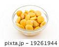 ウチワマメ: Lupini beans 19261944