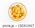 ウチワマメ: Lupini beans 19261947