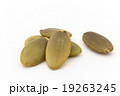 カボチャの種:Pumpkin Seeds 19263245
