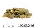カボチャの種:Pumpkin Seeds 19263246