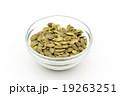 カボチャの種:Pumpkin Seeds 19263251