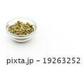 カボチャの種:Pumpkin Seeds 19263252
