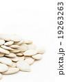 殻付きカボチャの種:Pumpkin Seeds 19263263