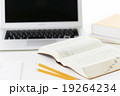 教育 19264234