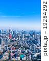 【東京】東京タワーと都市風景 19284292