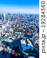 【東京】東京タワーと都市風景 19284560