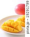 マンゴー キューブカット 果物の写真 19291799