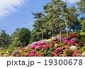 つつじ 風景 花園の写真 19300678