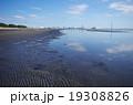 船橋市の海岸 19308826