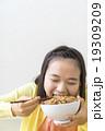 牛丼を食べる女の子 19309209