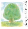 昭和の子供たち 大きな木 19313237