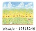 昭和の子供たち ひまわり畑でかくれんぼ 19313240