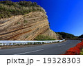 伊豆大島 地層断面 地層の写真 19328303