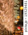 イルミネーション クリスマス 街路樹の写真 19329481