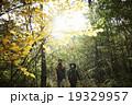 山道を散策するカップル 19329957