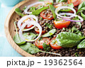 Lentil salad with cherry tomatoes 19362564