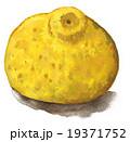 yuzu151218pix1 19371752