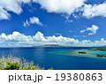 沖縄の青い海 19380863