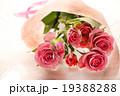 バラ 薔薇 ブーケ プレゼント ギフト 花束 愛 プロポーズ ウエディング 桃色 お祝い ローズ  19388288
