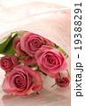 バラ 薔薇 ブーケ プレゼント ギフト 花束 愛 プロポーズ ウエディング 桃色 お祝い ローズ  19388291
