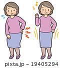 腰痛 健康 高齢者 女性 19405294