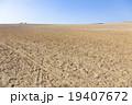 エジプトの砂漠 19407672