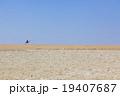 エジプト砂漠の地平線 19407687