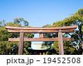 Meiji-jingu shrine,tokyojapan 19452508