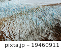 アルゼンチン グレイシャー 氷の写真 19460911