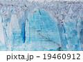 アルゼンチン グレイシャー 氷の写真 19460912
