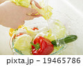 水道 洗う 野菜の写真 19465786