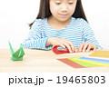 折り紙をする子供 折り紙をする子供の手元 パーツカット ボディパーツ 19465803