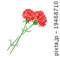 母の日 カーネーション 水彩画 感謝 挿絵 手描き 手書き 花 プレゼント 花束 愛 イラス 19468710