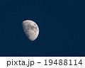 月齢 8.7 小潮頃の月 19488114