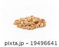 ウィートベリー: Wheat Berry 19496641