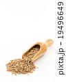 ウィートベリー: Wheat Berry 19496649