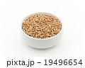 ウィートベリー: Wheat Berry 19496654