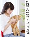 猫をかわいがる女性 19504827
