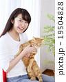 猫をかわいがる女性 19504828