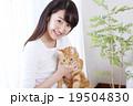 猫をかわいがる女性 19504830
