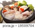 鍋料理 あんこう鍋 鍋物の写真 19509704