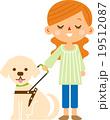 盲導犬 19512087