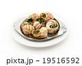 エスカルゴ: Cooked escargot on escargot plate 19516592
